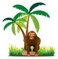 Gorilla standing under the tree