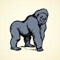 Gorilla. Vector illustration Royalty Free Stock Photo