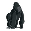 Gorilla vector image of big cartoon dark Stock Image