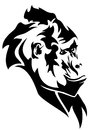 Gorilla wild mountain head black and white vector outline Royalty Free Stock Image