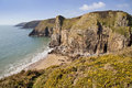 Gorse lined rocky layered coastline between lydstep and manorbier bay showing the vertical rock strata cliff of pembrokeshire Stock Photo