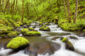 Gorton Creek in the Columbia River Gorge, Oregon, USA