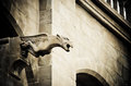 Gothic gargoyle of the cathedral of st michael at carcassonne france Stock Photos