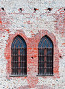 Gothic Windows Royalty Free Stock Image