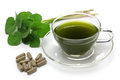 Gotu kola supplement pennywort drink asiatic centella asiatica ayurveda herbal Stock Photography