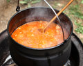 Goulash in stew pot Royalty Free Stock Images