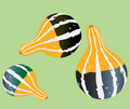 Gourd illustrations Royalty Free Stock Photography
