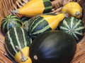 Gourds in basket of for the fall harvest season Stock Image
