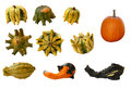 Gourds and pumpkins Stock Images