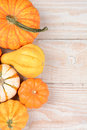 Gourds pumpkins vertical overhead view of a group of and on a white wood table with copy space Royalty Free Stock Image