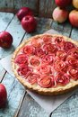 Gourmet apple pie. Open pie with red apple roses and cream filling served with organic apples on shabby blue wooden table Royalty Free Stock Photo