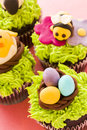 Gourmet chocolate easter cupcakes individually decorated Royalty Free Stock Image