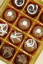 Gourmet Chocolates Royalty Free Stock Images