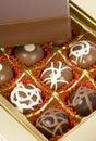 Gourmet Chocolates Stock Photography