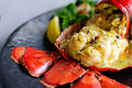 Gourmet lobster dinner at the restaurant Royalty Free Stock Photo
