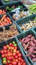 Grönsak i ask Arkivfoton