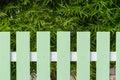 Grönt staket och bambuträd Arkivfoto