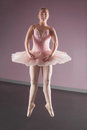 Graceful ballerina dancing en pointe Royalty Free Stock Photo