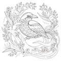 Graceful bird coloring page Royalty Free Stock Photo