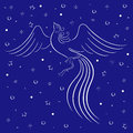 Graceful firebird contour over blue white on background with many stars hand drawing vector illustration Stock Images