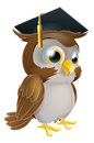 Graduate owl illustration of a cute cartoon wise wearing a mortarboard convocation or graduation hat Royalty Free Stock Image