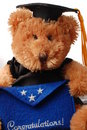 Graduation bear Royalty Free Stock Images