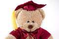 Graduation Teddy Bear Royalty Free Stock Photo