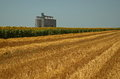 Grain bins in a field Royalty Free Stock Photo