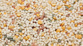 Grain blend Stock Photo