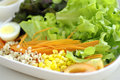 Grain or cereal salad healthy meal contain green hydrophilic vegetable carrot corn egg and millet Stock Photography