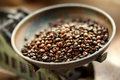 Grain coffee Royalty Free Stock Photo