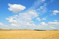 Grain field after harvesting with white clouds in the blue sky Royalty Free Stock Images