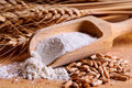 Grain, flour and wheat Royalty Free Stock Photo