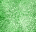 Grain green paint wall background or texture with nice structure Stock Photo