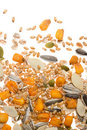 Grain, seed and cereal Stock Photography