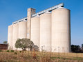 Grain Silo Royalty Free Stock Photo