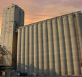 Grain silo and elevator Royalty Free Stock Photo