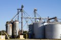 Grain storage silos with elevator equipment to move bulk crops to the containers Stock Image