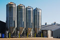 Grain storage silos large scale commercial chicken farm with four for the of poultry feed Stock Photography