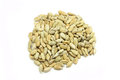 Grain sunflower seeds on a white background Royalty Free Stock Photography