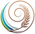 Grain swirl
