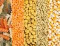 Grains lentil,pasta,corn,wheat Royalty Free Stock Photo