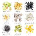 Grains seeds and beans great highly detailed set of Stock Photo