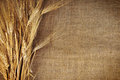 Grains on traditional fabrics brown as background Royalty Free Stock Image