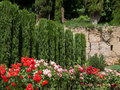 Granada andalucia spain may view of the alhambra palace g gardens in on Royalty Free Stock Images
