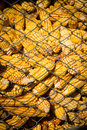 Granary filled with corn cobs in the countryside Stock Photo