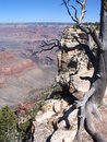 Grand canyon Stock Photo
