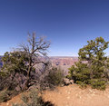 The Grand Canyon in Arizona Royalty Free Stock Photo