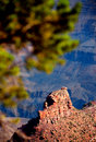 Grand Canyon Detail Stock Photography
