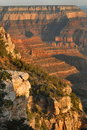 Grand Canyon From Mather Point Stock Photos